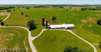 Well-known Palmore Farm set for September auction