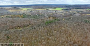 Wisconsin recreational, grazing land and home set for September auction